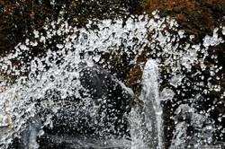 le stagioni dell'acqua_the seasons o