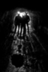 silhouettes-808153.jpg