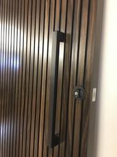 Stain Vic. Ash Heavy Veneer Door