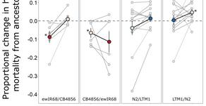 Parasites on Rare vs. Common Hosts