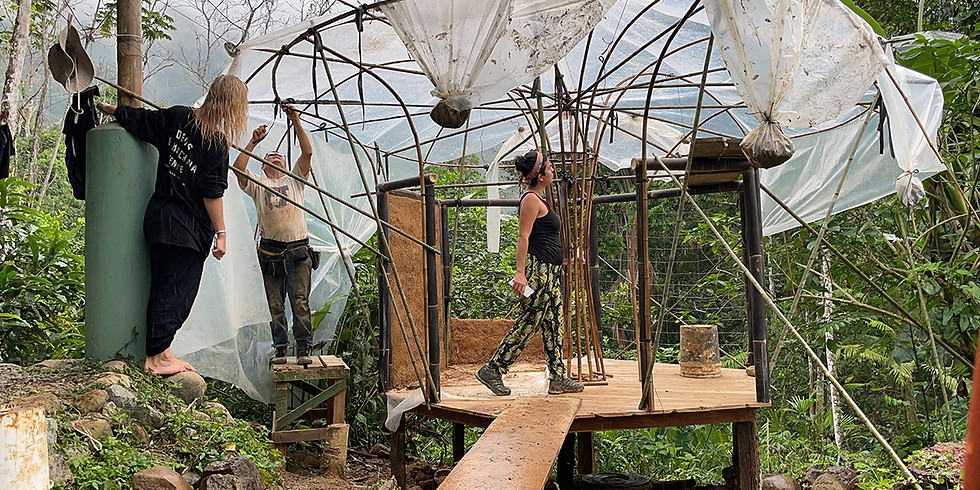 Bamboo Building Immersion