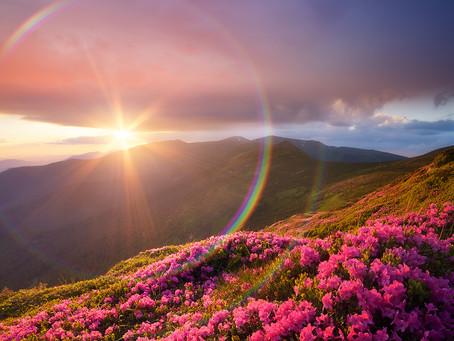 Global Healing Foundation Full Moon Meditation OCT. 31, 2020