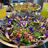 Food.Bc2.salad.JPG