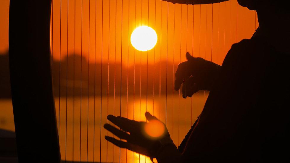 Harp Sun1.jpg