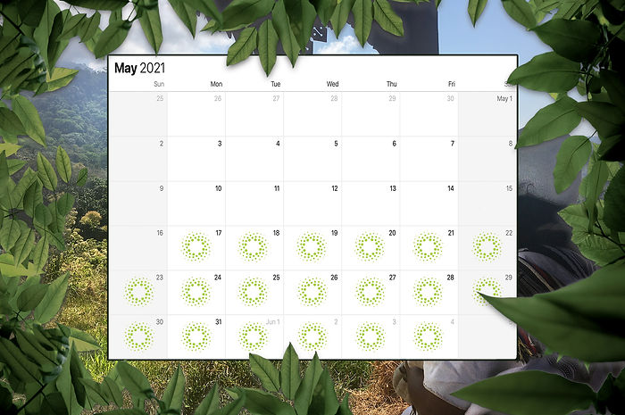 May2021Mamos.jpg