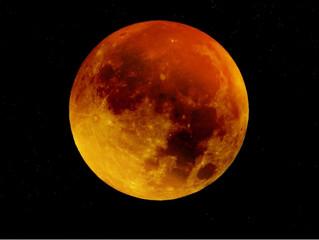 Super Blood Moon &                             Total Lunar Eclipse in Leo