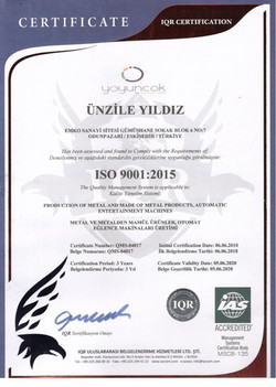 ISO9001 2020 001