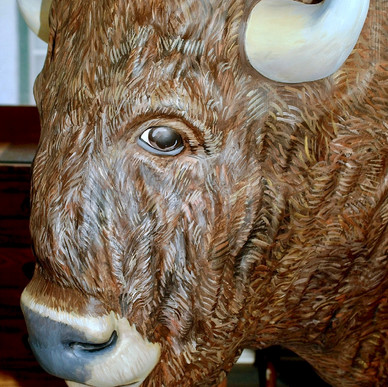 """Buffalo Robe"" (detail)"