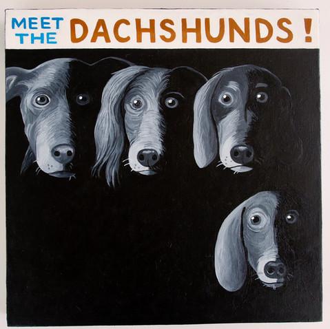 """""""Meet the Dachshunds"""""""