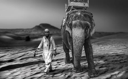 Agra I - India