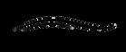 לוגו- כיתוב שחור בלי ער.png