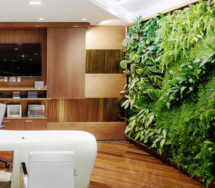 Office with Vertical Garden Design
