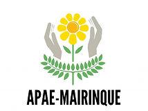 apae-mairinque-celebra-semana-nacional-d