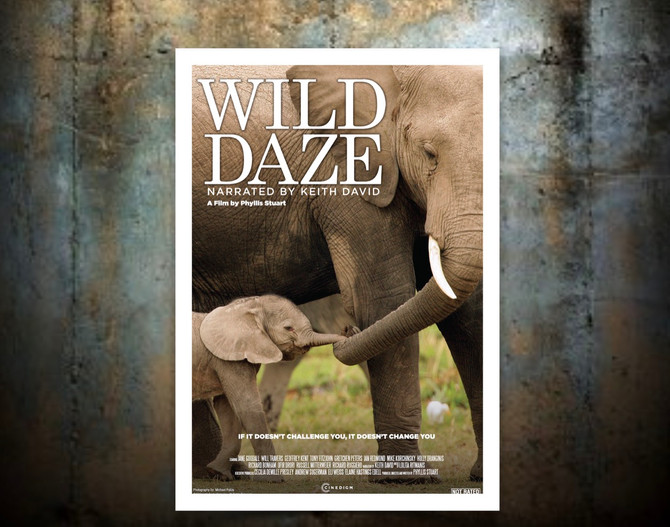 "Drive-in at the Ebell of LA to Feature ""Wild Daze"""