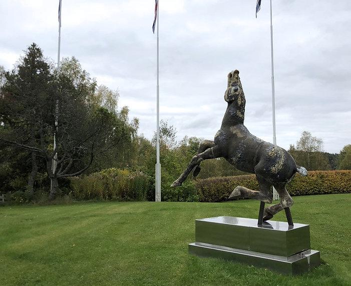 2019 hest.jpg