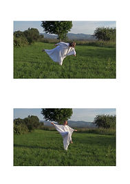 Balance-garden_1.jpg