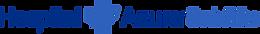 logo_satelite-1.png