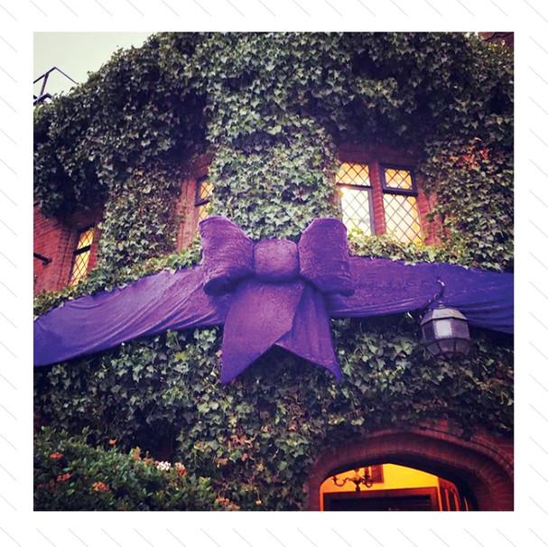 Giant Purple Bow 2