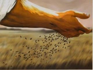 A mensagem que transforma o pecador