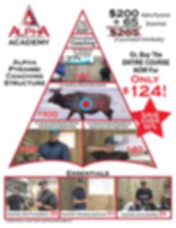 Medium pyramid pricing.jpg