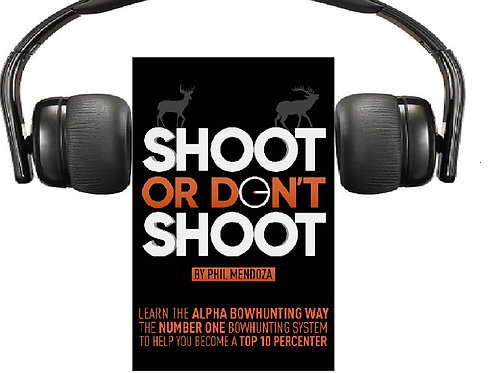 Shoot or Don't Shoot Audio Book