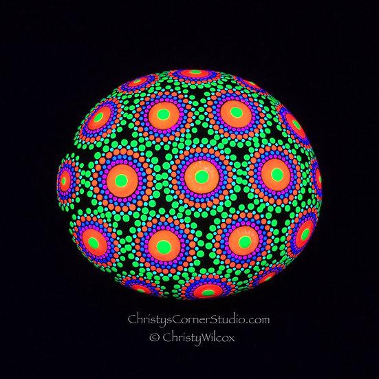 Eye of Jupiter Zoanthid