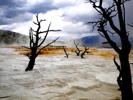 Yellowstone, Wyomnig