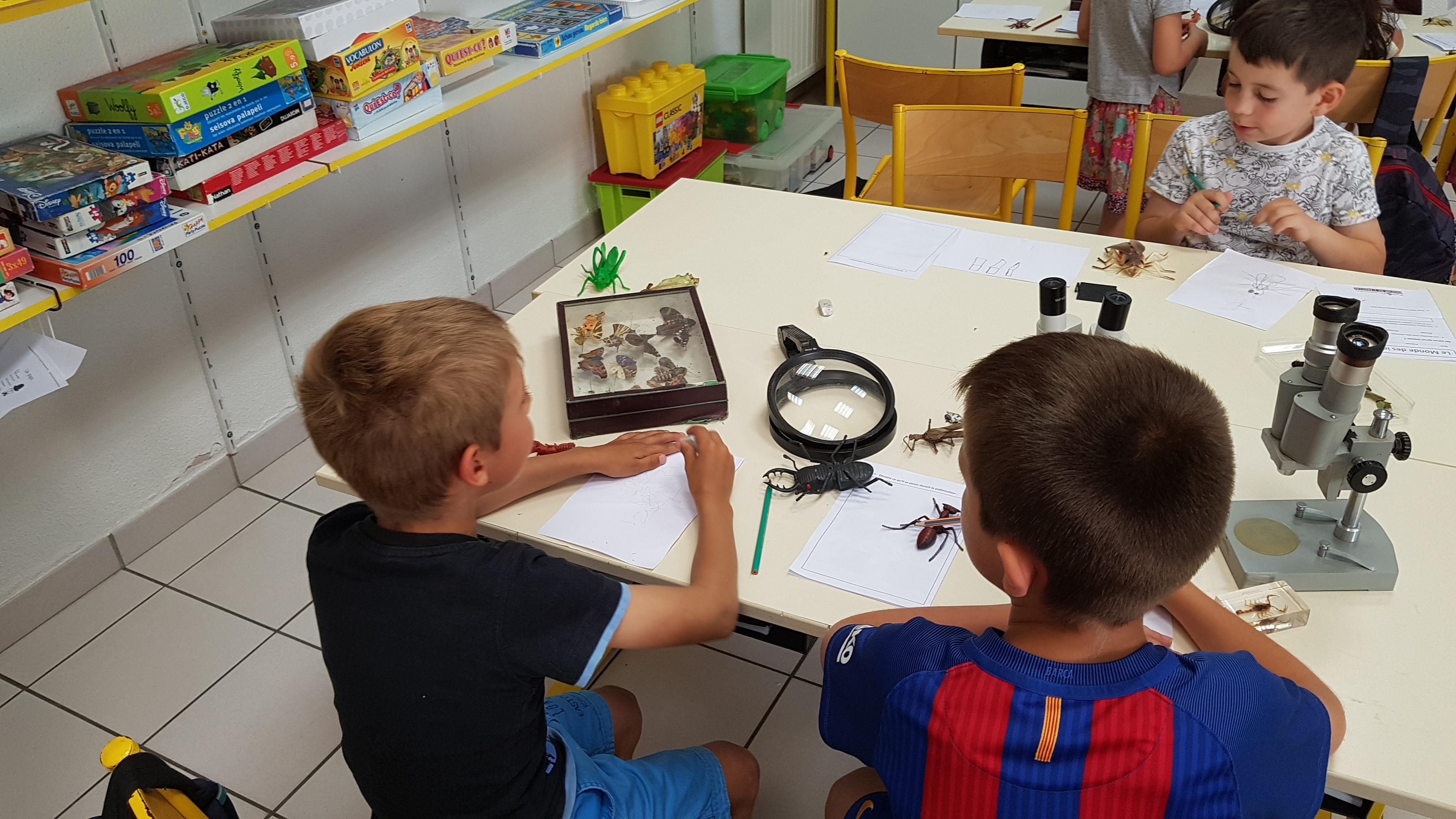 """Ateliers Jeune public """"Sciences et Développement Durable"""""""