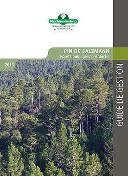 Guide de gestion Pin de Salzamann.jpg