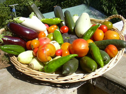 Favoriser l'accès aux produits bio et locaux