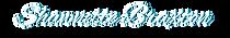 SB Logo White