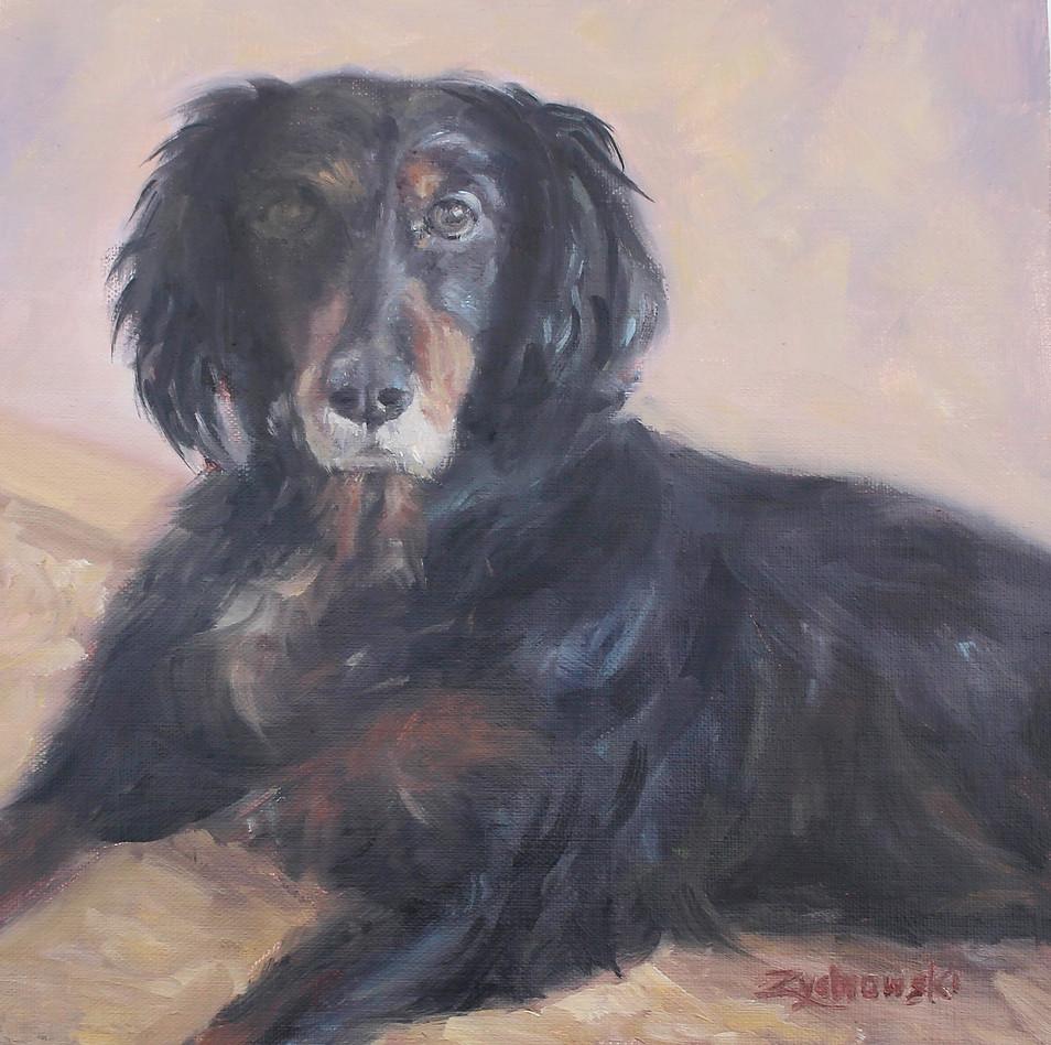 Brooksie- Custom Pet Portrait