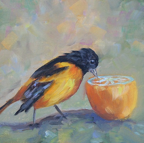 Oriole lunch 6x6
