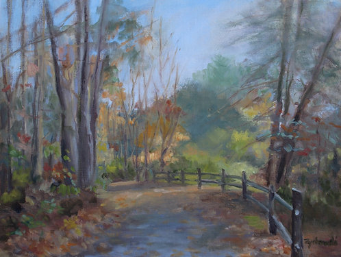 Roaring Brook Park in Fall   9x12