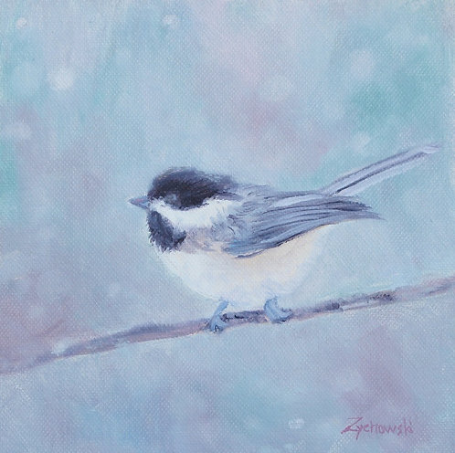 Cool Chickadee   6x6