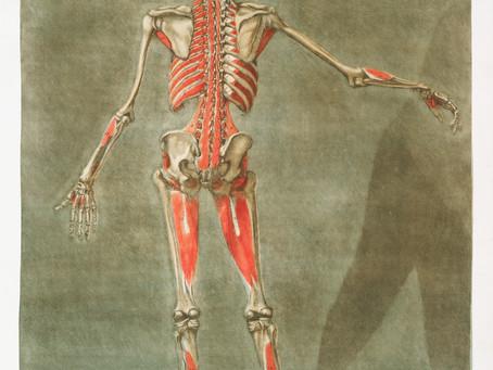 Immagine corporea, disturbi alimentari e autismo