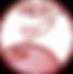 Circle_ICPAD2019_web.png