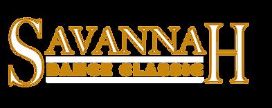SDC Logo White.png