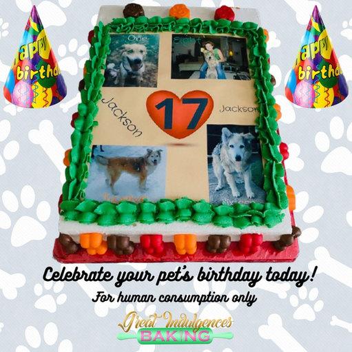 Pet birthday.jpg