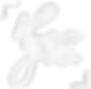 logo blanc_edited.png