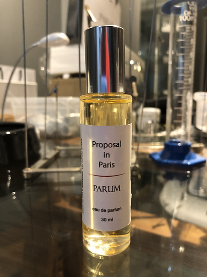 Proposal in Paris 30 ml.HEIC