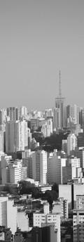 Sao Paulo Skyline PB