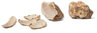 truffe-blanche1.png