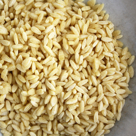 All about Orzo