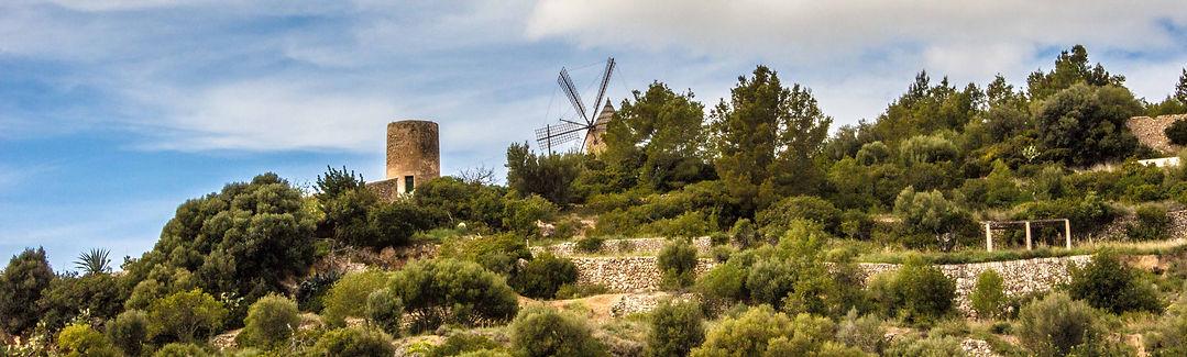 Molino de Andratx