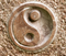 The Science of Yin and Yang