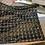 Thumbnail: Asymmetrical Foldable Holographic Clutch