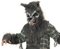 Children's Werewolf Costume