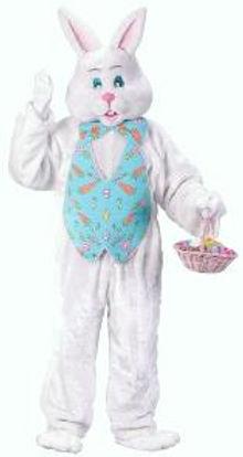 rental bunny