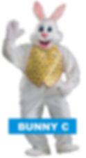 bunny rental toronto